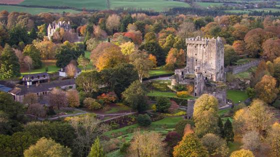 Blarney Castle, Castles of Ireland